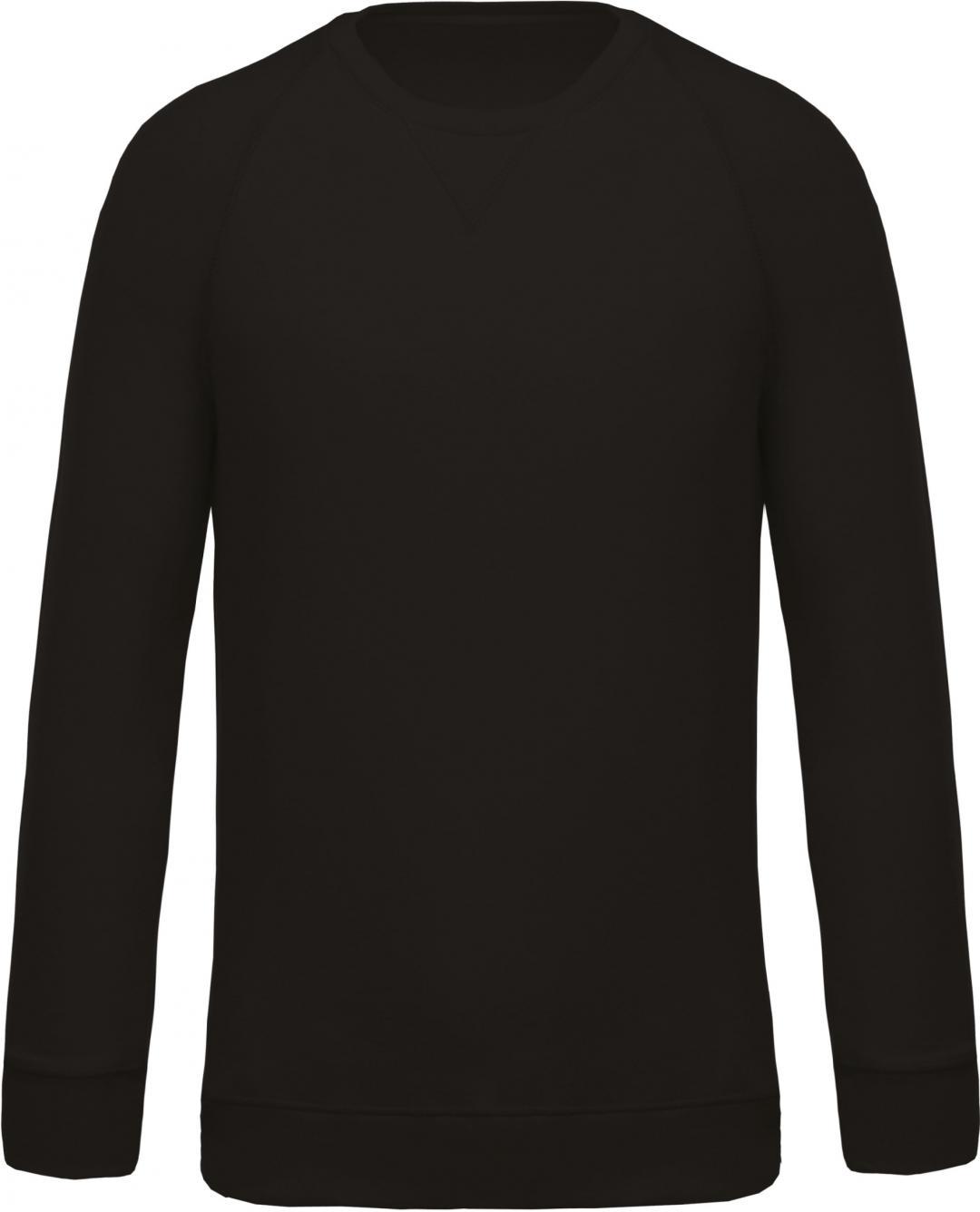 Sweat - Shirt Man - Raglan Sleeves - Bio - Dauti
